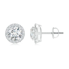 Claw-Set Moissanite Halo Stud Earrings