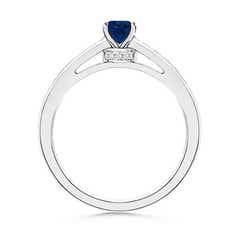 Toggle Oval Solitaire Sapphire Ring with Channel Set Diamond