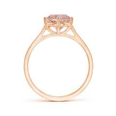Toggle Six Prong-Set Round Morganite Cathedral Engagement Ring